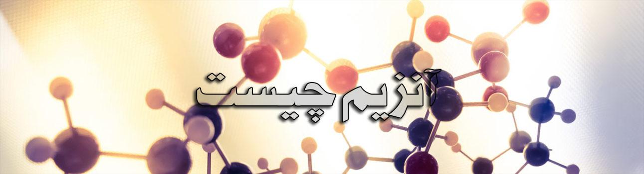 Anzim safirazmakian ir5 - خرید آنزیم | فروش آنزیم | کاربرد آنزیم در بدن انسان