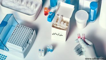خرید کیت آزمایشگاهی مولکولی   نمایندگی فروش خرید کیت آزمایشگاهی مولکولی و استخراج DNA