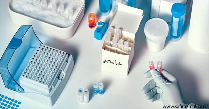 خرید کیت آزمایشگاهی مولکولی | نمایندگی فروش خرید کیت آزمایشگاهی مولکولی و استخراج DNA